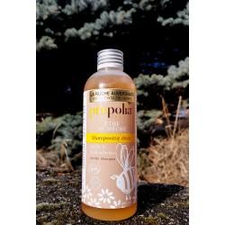 shampooing doux Propolia